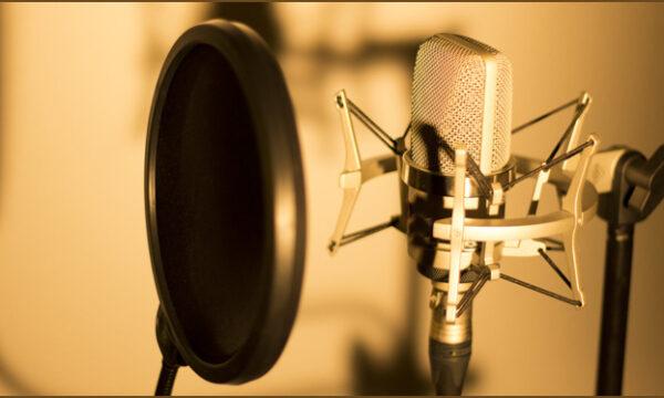 Cantante de sesionII